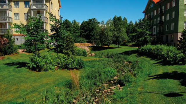 green landscape with stormwater swale.
